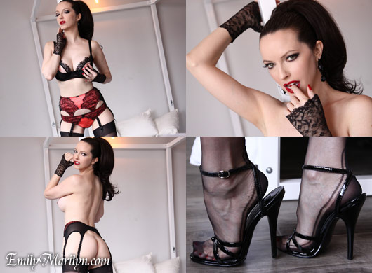emily marilyn fine french lace and fully fashioned stockings